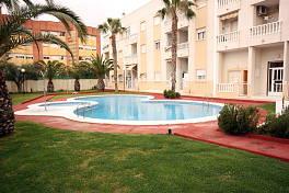 Аренда апартаменты в испании торревьеха
