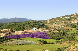 Incredible investment opportunity! Frontline plot within walking distance of the clubhouse & riding stables at the Marbella Club Golf Resort, Benahavis