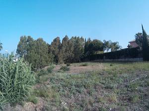 Excellent plot with 1.262m2 suitable to build 40%, Monte Biarritz, Estepona